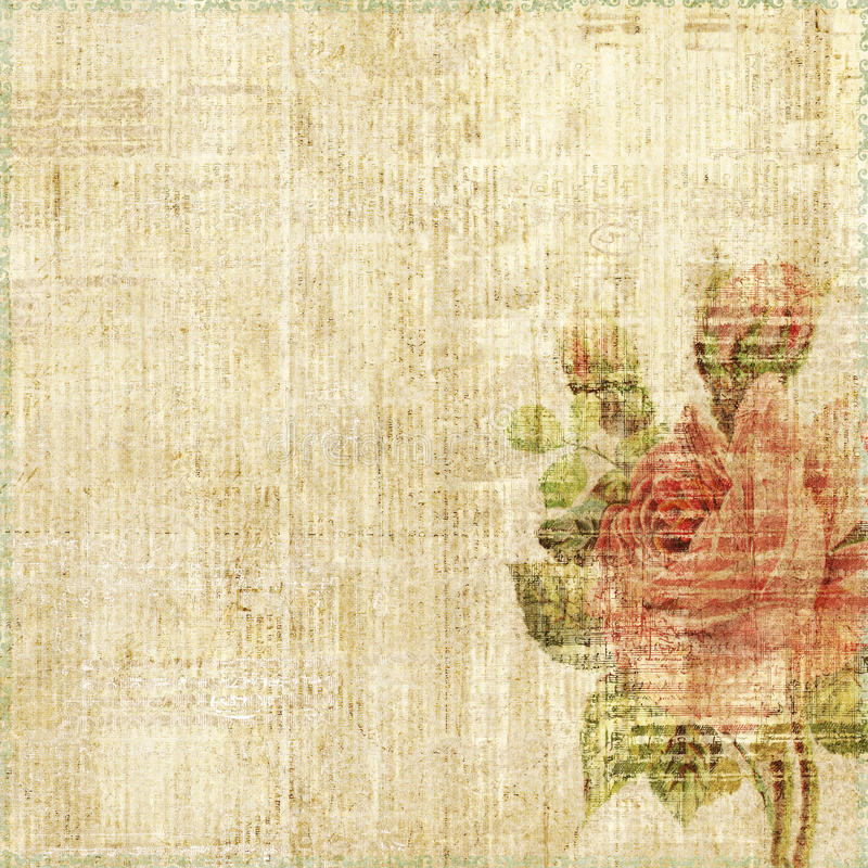 Grungy shabby spotted background with rose vector illustration