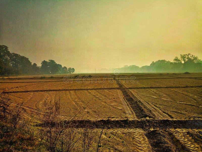 Grunt rolny gotowy uprawiać ziemię banatka fotografia royalty free