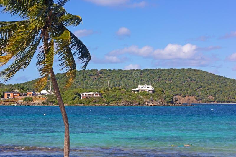 Grunt varmt vatten av den tropiska öfjärden erbjuder perfekta villkor för att snorkla royaltyfri bild