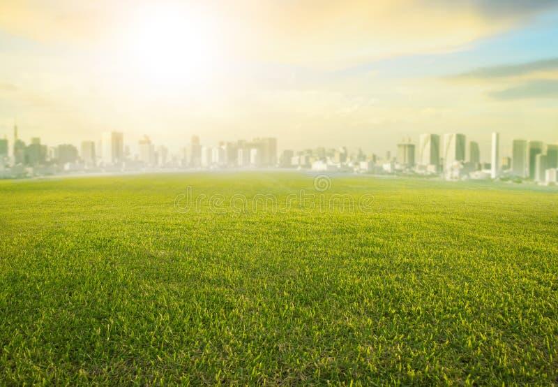 Gruntowego głąbika zielonej trawy szeroki pole i nowożytny budynek miastowy s fotografia royalty free