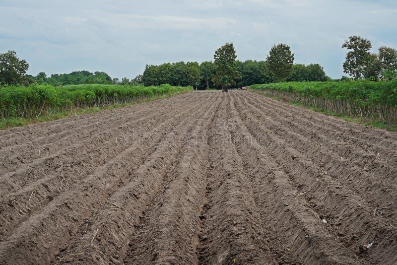 Gruntowy przygotowanie dla kasawy w rainfed terenie fotografia stock