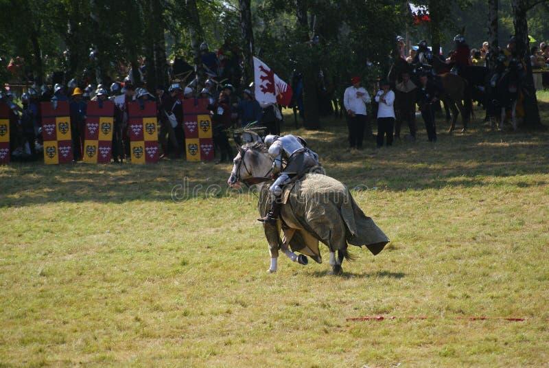 Grunwald, Polonia - 2009-07-18: Cavaliere montato fotografia stock libera da diritti