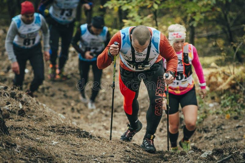 Grupa atlety biega wzdłuż lasowego śladu w górze fotografia royalty free