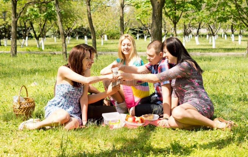 Grupa atrakcyjni młodzi przyjaciele na pinkinie zdjęcie royalty free