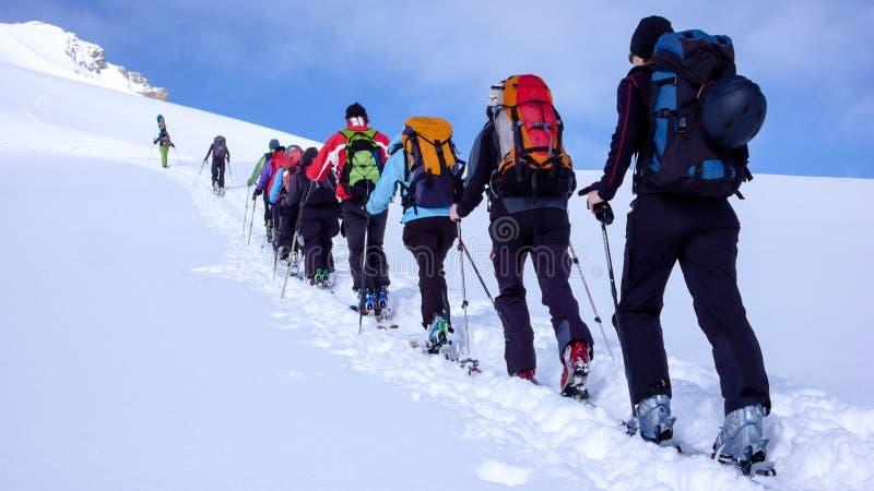 Grupa backcountry narciarki wspina się górę w Szwajcarskich Alps obraz royalty free