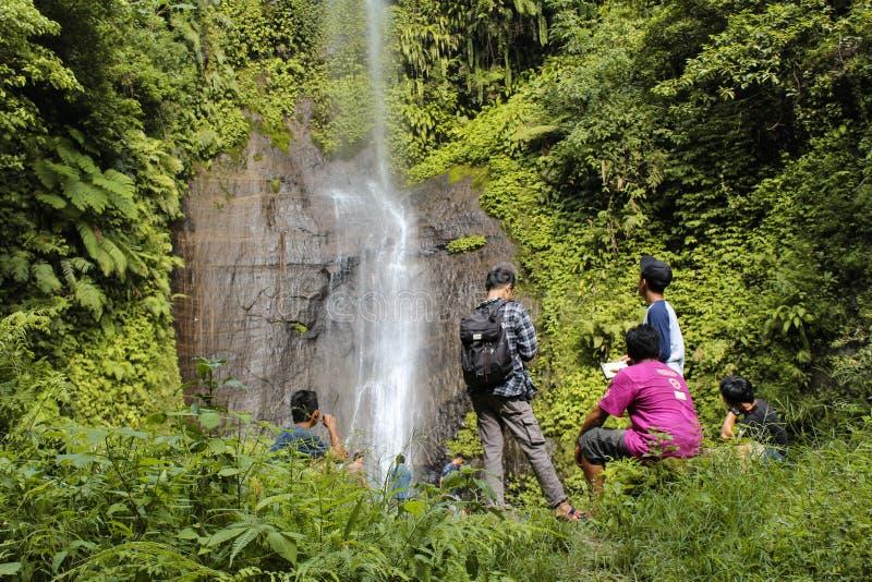 Grupa cieszy się tropikalnego siklawa widok turysta obrazy royalty free