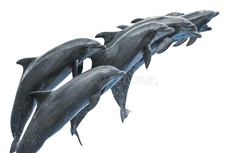 Grupa delfinów skakać obraz royalty free