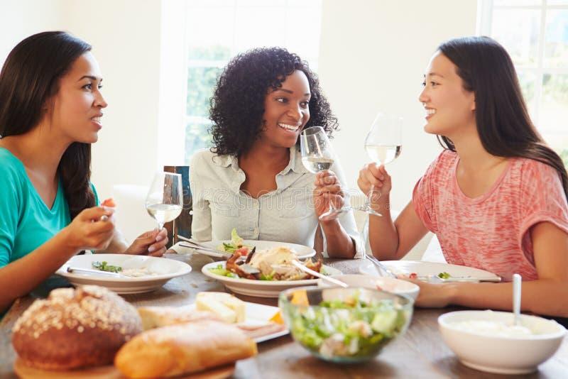 Grupa Żeńscy przyjaciele Cieszy się posiłek W Domu zdjęcie stock