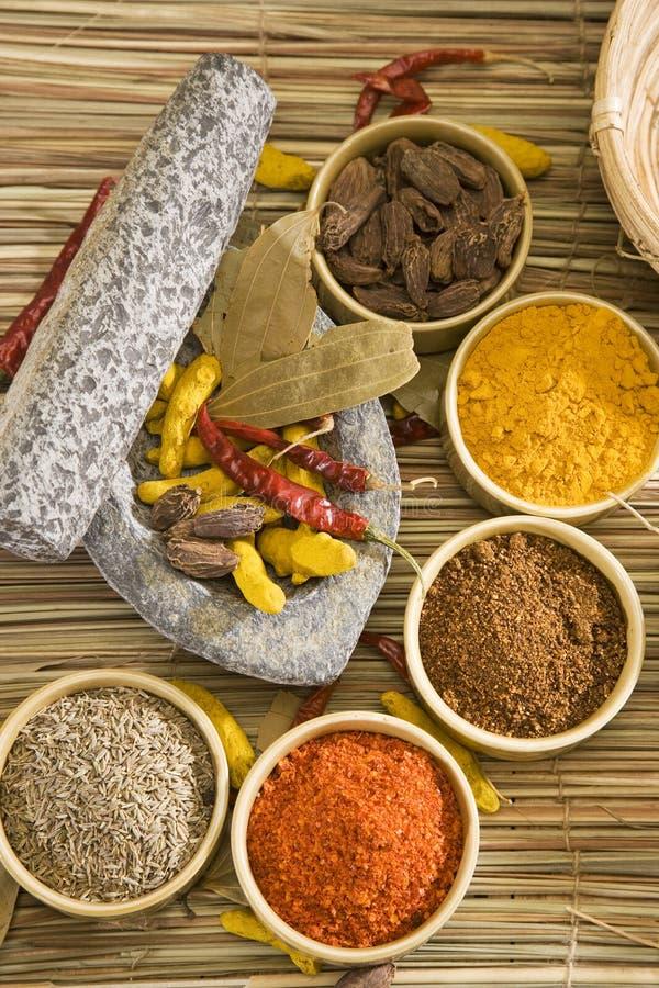 Grupa Indiańskie pikantność zdjęcia stock
