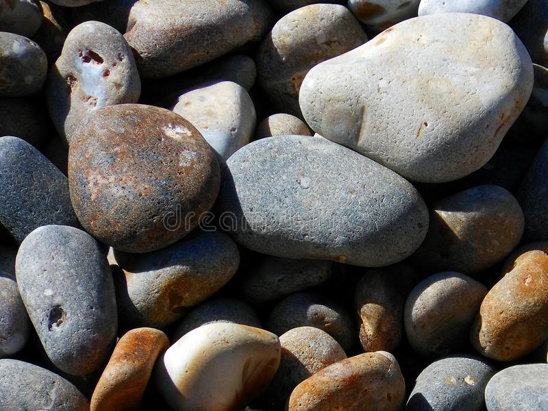 Grupa kamienie na Sidmouth plaży w Devon, Anglia obrazy stock