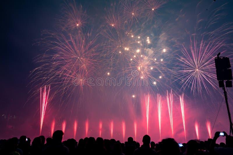 Grupa ludzi dopatrywania fajerwerki z muzyką zdjęcia royalty free