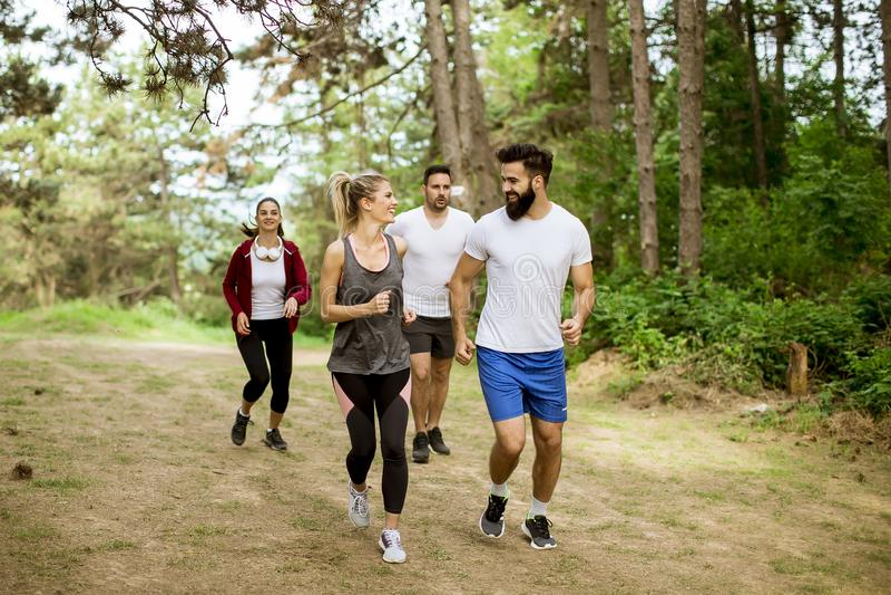 Grupa młodzi ludzie biega maraton przez lasu obrazy stock