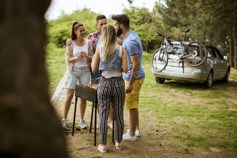 Grupa młodzi ludzie cieszy się grilla przyjęcia w naturze fotografia stock