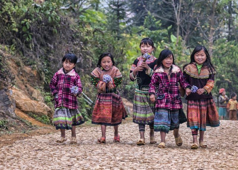 Grupa młode dziewczyny na rolnej drodze w górach fotografia royalty free