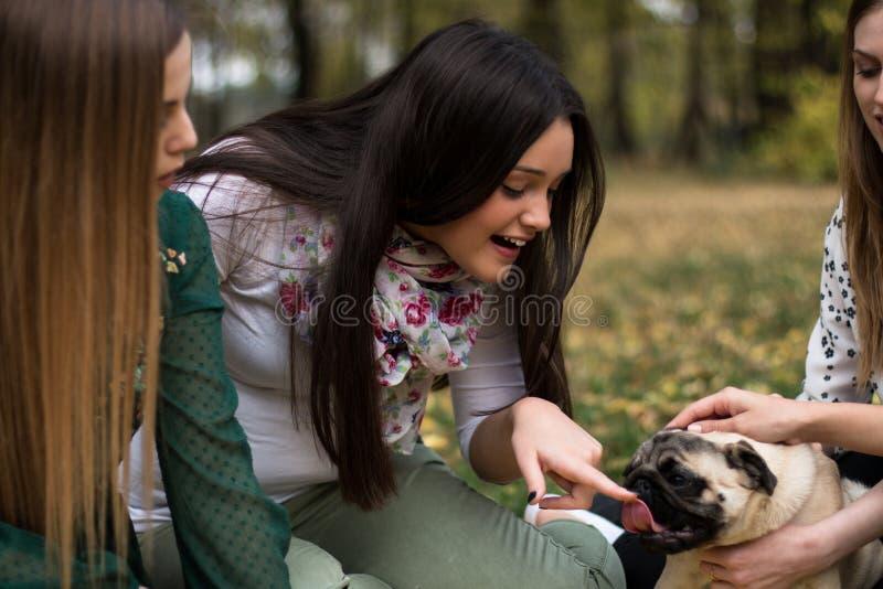 Grupa młode kobiety bawić się z mopsa psem zdjęcia royalty free