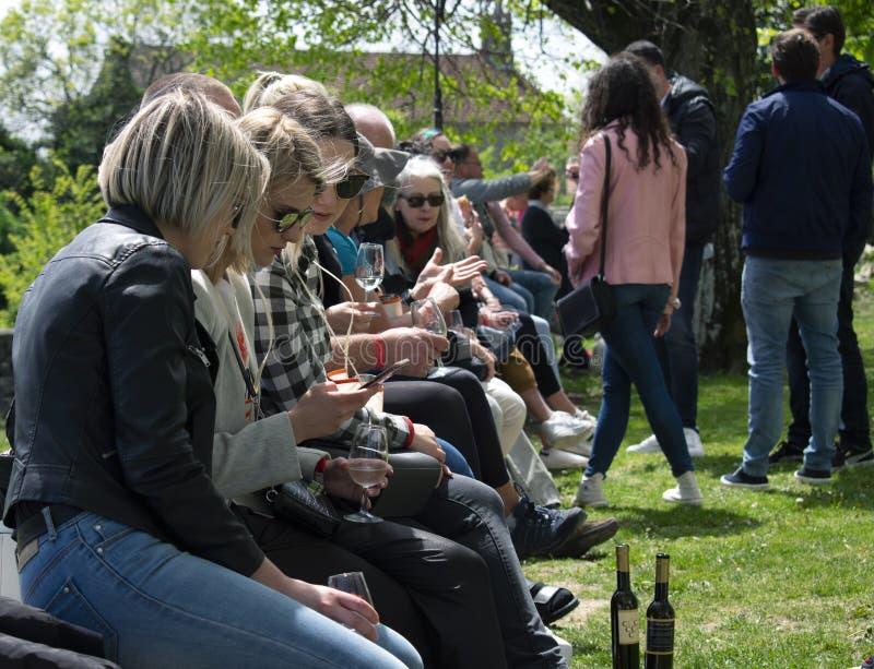Grupa młodzi ludzie przy wino festiwalem zdjęcie stock