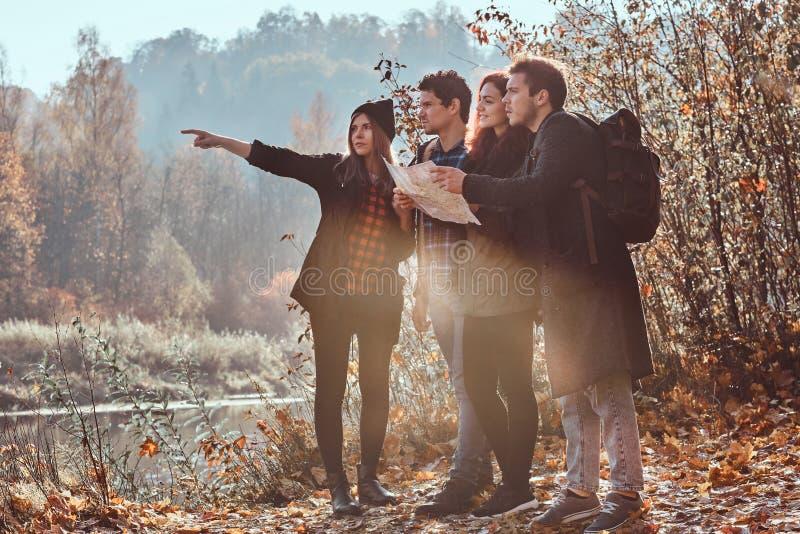 Grupa młodzi przyjaciele wycieczkuje w jesień kolorowym lesie, patrzejący mapę i planowanie podwyżkę fotografia stock