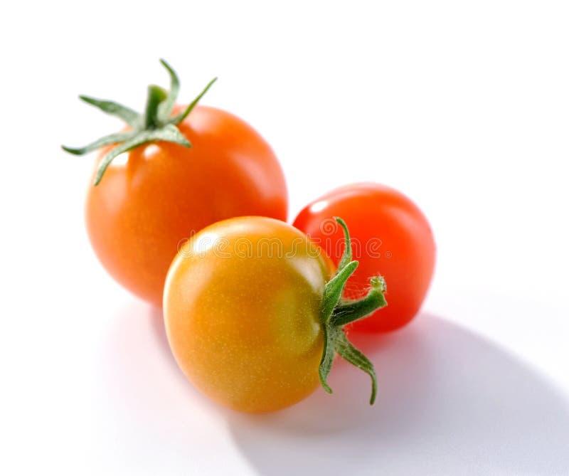 Grupa mały pomidoru zakończenie na białym tle zdjęcia royalty free