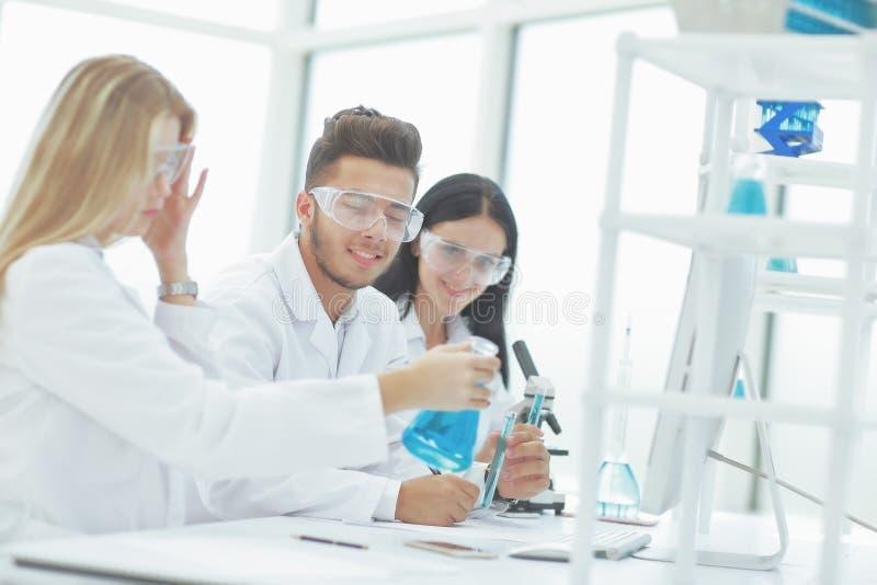 Grupa naukowowie dyskutuje ciecz w kolbie zdjęcia stock