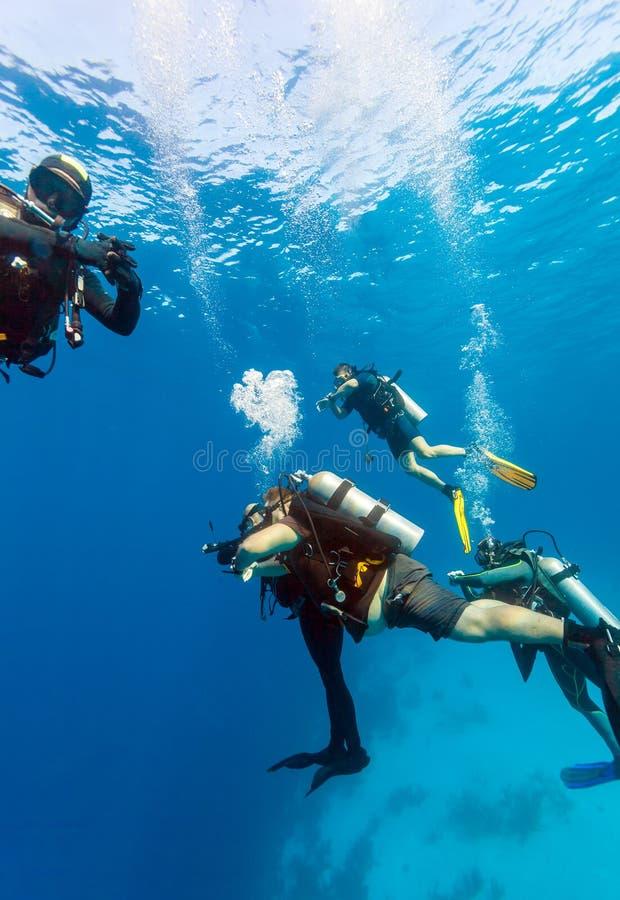 Grupa nurkowie na 5 minut zbawczej przerwie zdjęcie royalty free