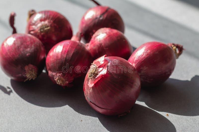 Grupa organicznie czerwona cebula obrazy royalty free
