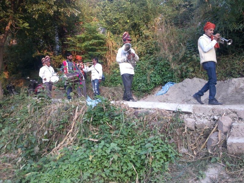 Grupa pasma przecinająca ścieżkę zdjęcia stock