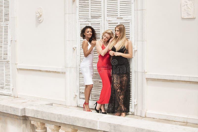 Grupa piękne seksowne damy w eleganckich sukniach przy pogodnym summe zdjęcie royalty free