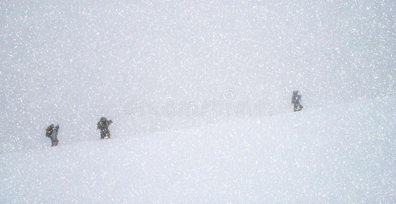Grupa podróżnicy trekking w górach w śniegu blizzar obrazy stock