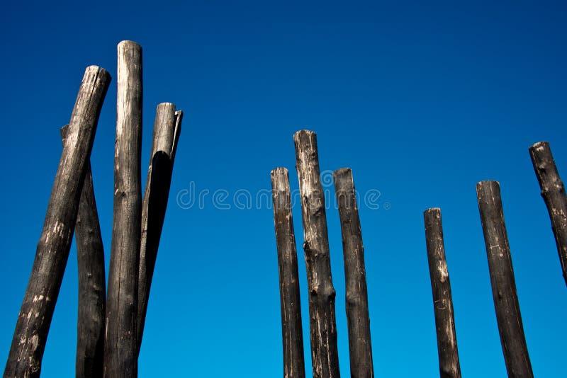 Grupa przypalający drewniani słupy obrazy stock