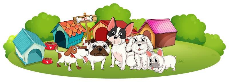 Grupa psy na zewnątrz ich domów ilustracji