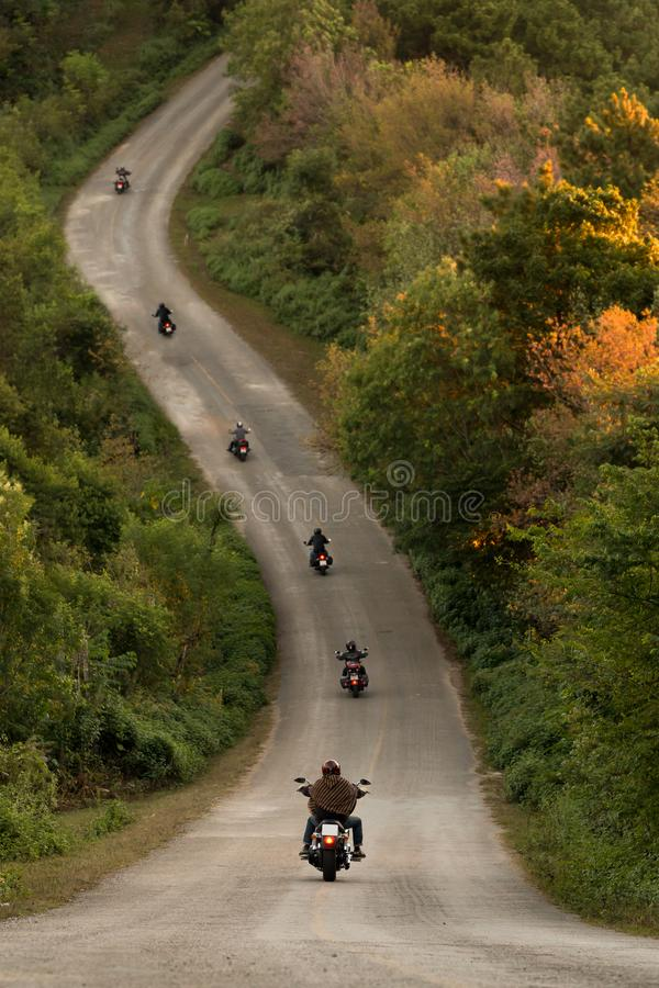 Grupa rowerzyści na autostradzie między pięknym zielonym drzewem fo fotografia royalty free
