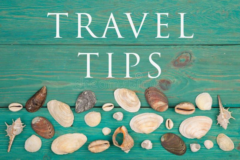 Grupa seashells i tekst podróży porady obrazy stock