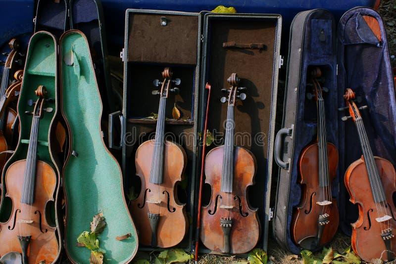 Grupa skrzypce i ich skrzynki zdjęcia stock