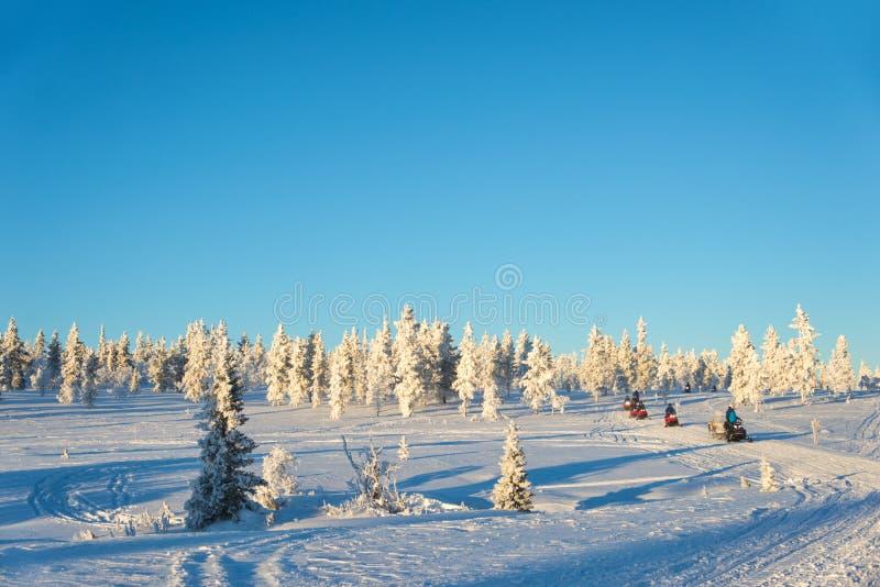 Grupa snowmobiles w Lapland, blisko Saariselka Finlandia obraz stock