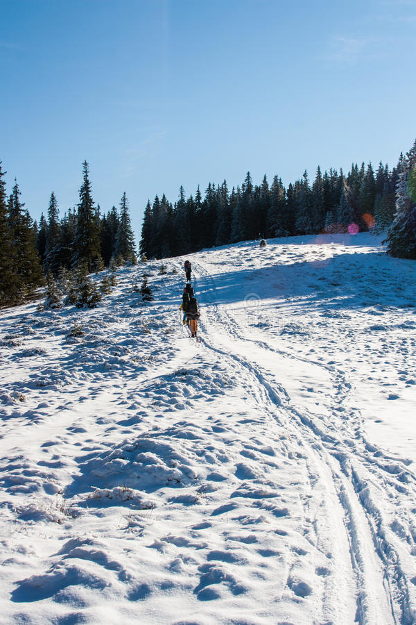 Grupa turyści na śnieżystym wzgórzu obrazy royalty free