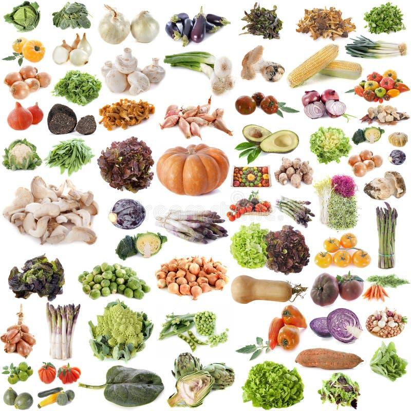 Grupa warzywa obraz stock