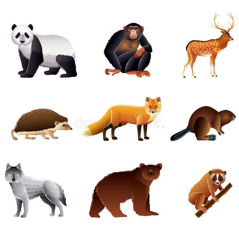 Grupo asiático do vetor dos animais ilustração royalty free