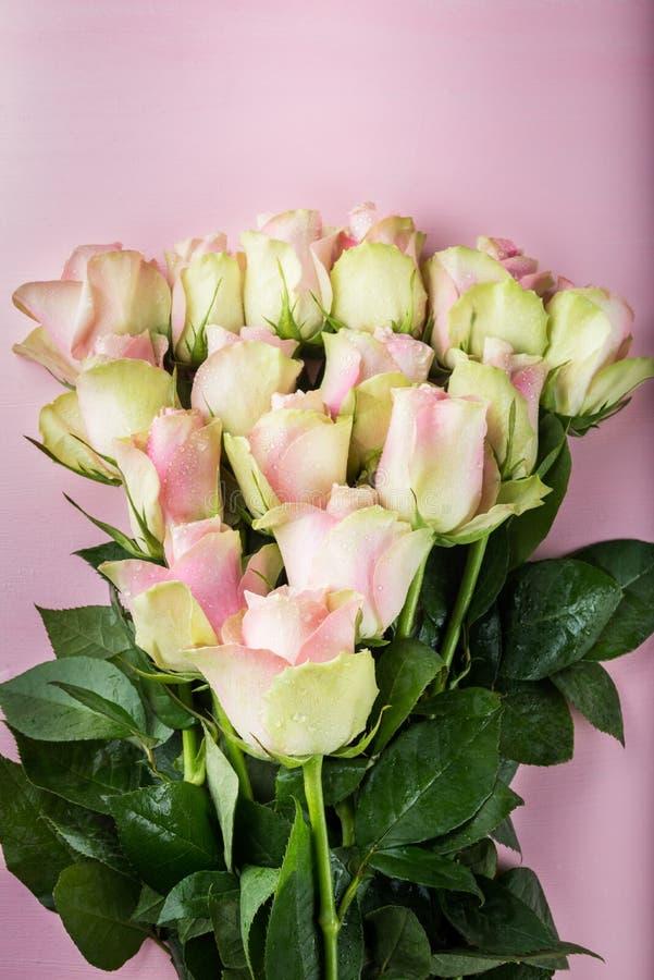 Grupo bonito de duas rosas coloridas imagem de stock royalty free