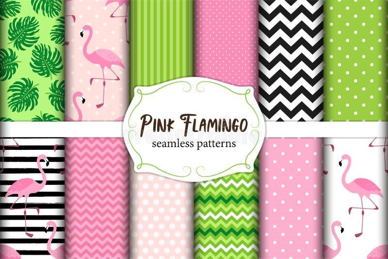 Grupo bonito de testes padrões sem emenda das vibrações tropicais cor-de-rosa do flamingo Ilustração do vetor ilustração stock