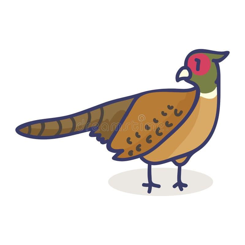 Grupo bonito do motivo da ilustração do vetor dos desenhos animados do faisão Pássaro isolado tirado mão ilustração stock