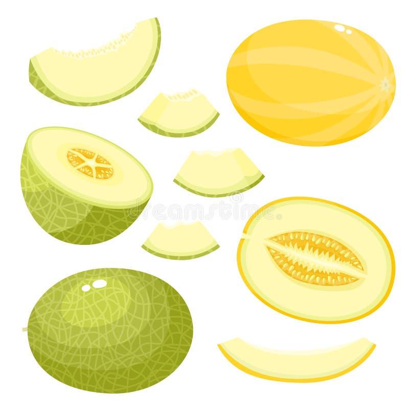 Grupo brilhante do vetor de melão do suco isolado no fundo branco ilustração royalty free