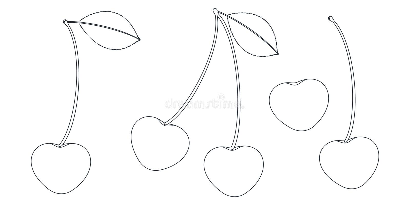 Grupo colorindo preto e branco de cerejas maduras inteiras ilustração stock