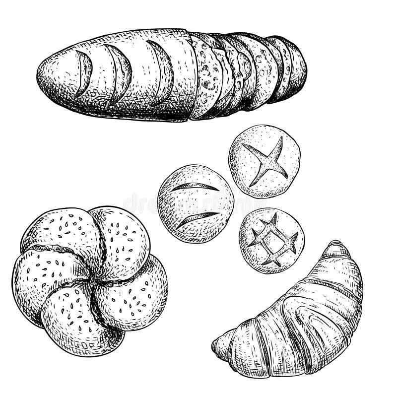 Grupo cozido fresco dos bens de padaria Baguette francês com fatias, croissant, rolo de pão e os bolos diferentes do pão Vista su ilustração do vetor