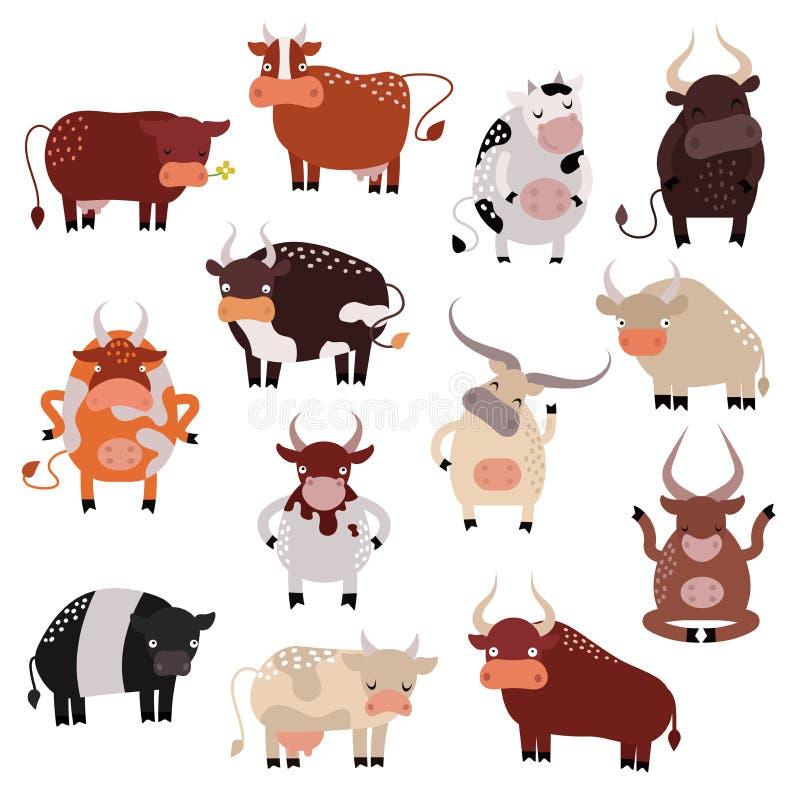 Grupo da ação da vaca dos desenhos animados, com a bezerra bonita bonito no vetor diferente das poses ilustração stock