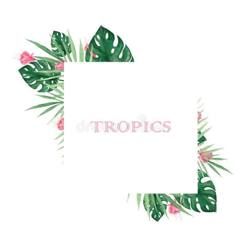Grupo da aquarela com folhas e as flores tropicais ilustração royalty free
