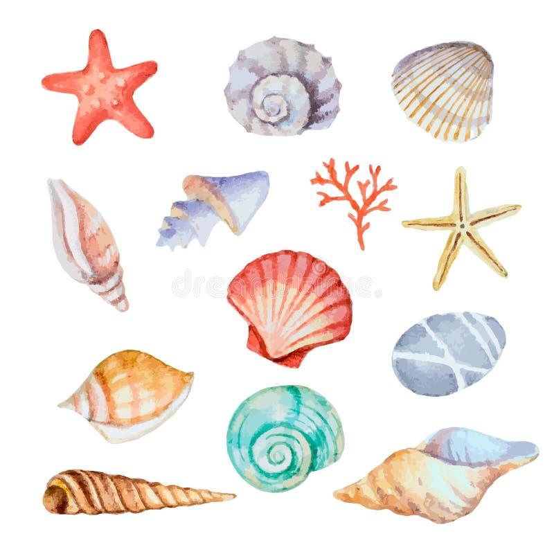 Grupo da aquarela de conchas do mar ilustração royalty free