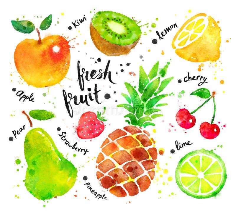 Grupo da aquarela de fruto ilustração royalty free