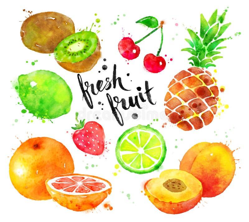 Grupo da aquarela de fruto ilustração stock