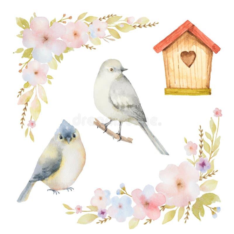 Grupo da aquarela de pássaros, de flores e de aviários ilustração stock