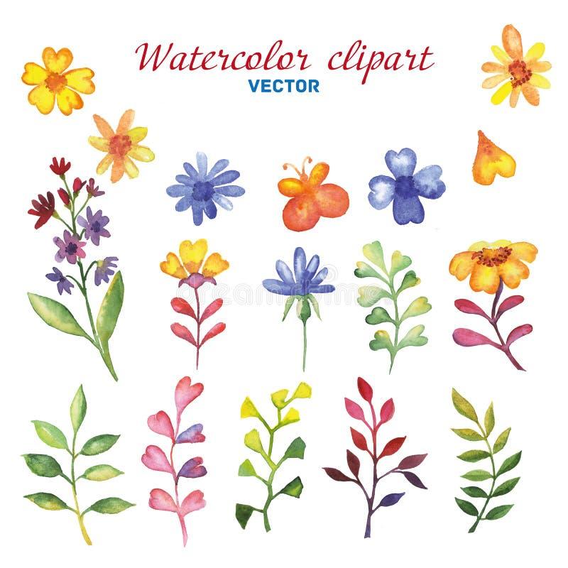 Grupo da aquarela de vetor dos wildflowers fotografia de stock royalty free